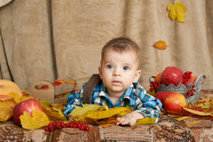Autumn little child boy lie on yellow fall leaves, apples, pumpkin and decoration on textile royalty free stock photography