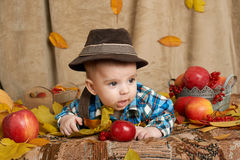 Autumn little child boy lie on yellow fall leaves, apples, pumpkin and decoration on textile stock image