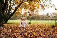Autumn. Little Girl Playing autumn leaves Stock Photography