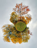 Autumn little planet - Globe with forest Stock Image