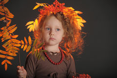 Autumn little red-haired princess Stock Images