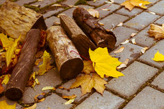 Autumn. Logs of wood lying on the pavement. Yellow maple leaves Royalty Free Stock Images