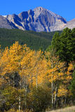 Autumn and Longs Peak. Autumn colors with 14,259 ft Longs Peak. Blue sky, bright colors and Incredible mountain peak. Colorado Stock Photos