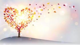 Autumn In Love - árvore Fotografia de Stock Royalty Free