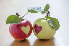 Autumn Love. Apples in love on a table Royalty Free Stock Photo