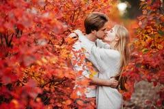 Autumn love, couple kissing in fall park stock photos