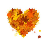 Autumn love, heart shape, leaf Stock Images