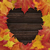 Autumn Love. Autumn maple leaves on a dark wooden background with heartshaped copy space Stock Images