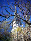 Autumn in Lviv. Bare tree branches on blue sky with church on the background. Lviv, Ukraine Royalty Free Stock Image