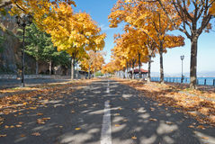 Autumn in Macedonia. An autumn road in Kalista, Macedonia Royalty Free Stock Images