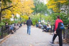 Autumn Madison Square Park Royalty Free Stock Image