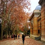 Autumn in Madrid stock photo