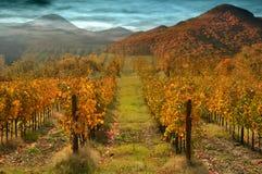 Autumn magic scenery Stock Photography