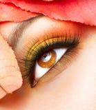 Autumn Makeup Closeup. Autumn Makeup. Fall Make-up Closeup royalty free stock photography