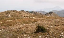 Autumn Mala Fatra mountains in Slovakia Stock Photo