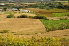Autumn maltese landscape. Village with cultivated fields Royalty Free Stock Image