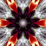 Autumn Mandala Flower Royaltyfria Bilder