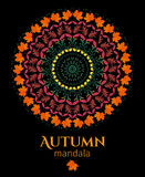 Autumn mandala Stock Photography