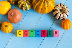 Autumn, many-coloured pumpkins frame, the word Royalty Free Stock Photos