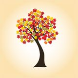 Autumn maple. With colorful leaves, vector imag for design Stock Photos