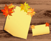 Autumn maple background Royalty Free Stock Photo