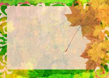 Autumn maple frame Stock Photography