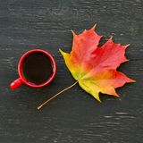 Autumn Maple Leaf And Cup Of Tea Stock Photography