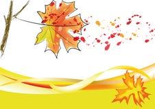 Autumn maple leaf grunge 2 Stock Image