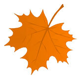 Autumn Maple Leaf Low Poly Fotos de archivo