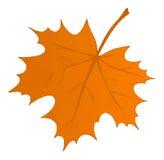 Autumn Maple Leaf Low Poly Fotos de archivo