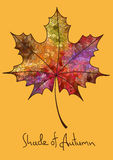 Autumn maple leaf made of mosaic Stock Photography