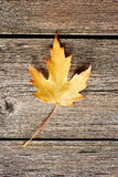 Autumn maple leaf over wooden background Royalty Free Stock Photography
