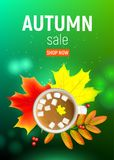 Autumn maple leaf and rowan branches with ashberry and cup of coffee with marshmallow on a green background. Vector. Sales banner with maple autumn leaves and Royalty Free Stock Photos
