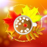 Autumn maple leaf and rowan branches with ashberry and cup of coffee with marshmallow on a orange background. Vector. Banner with maple autumn leaves and rowan Royalty Free Stock Image