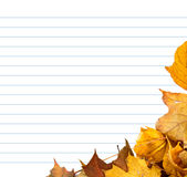 Autumn maple-leafs and notebook paper Stock Photography