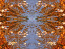 Autumn maple leaves abstract Stock Photos