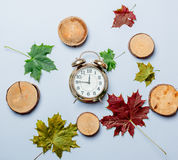 Autumn maple leaves and alarm clock Royalty Free Stock Photos