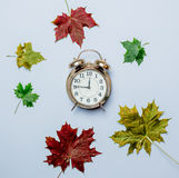 Autumn maple leaves and alarm clock Royalty Free Stock Image