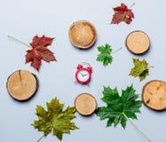 Autumn maple leaves and alarm clock Stock Photo