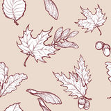 Autumn Maple Leaves And Seads Seamless Pattern Royalty Free Stock Photo