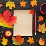 Autumn maple leaves, apple, cup of tea, paper for text and pencil Stock Photos