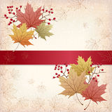 Autumn Maple leaves background with grunge texture Royalty Free Stock Photography