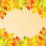 Autumn maple leaves on a background of notebook sheet Stock Image