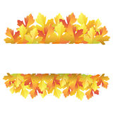 Autumn maple leaves banner Royalty Free Stock Photos