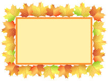 Autumn maple leaves banner Stock Photography