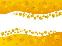 Autumn Maple Leaves Border Frame amarillo de oro Imagen de archivo libre de regalías