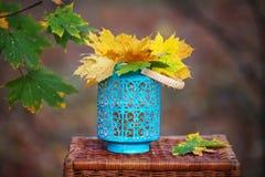 Autumn maple leaves bunch in vase Stock Photos