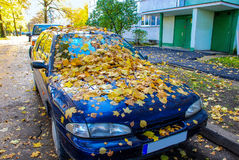 Autumn, maple leaves, on a car Royalty Free Stock Photo