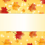 Autumn maple leaves card Royalty Free Stock Photography