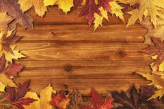 Autumn maple leaves over wooden background. Top view. royalty free stock photo